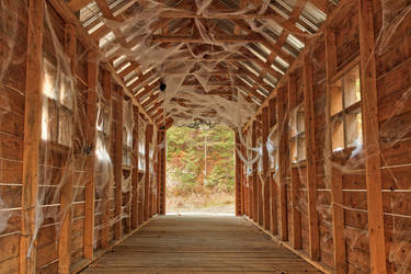 Cobweb Covered Bridge by somadjinn