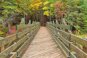 Autumn Bonshaw Bridge by somadjinn