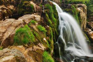 Loup of Fintry Moss Waterfall by somadjinn