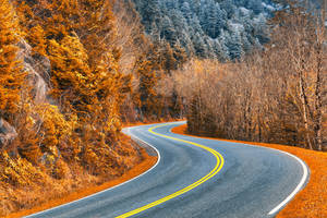 Burning Frost Road by somadjinn