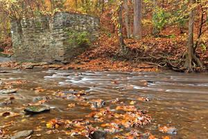 Rustic Fall Creek by somadjinn