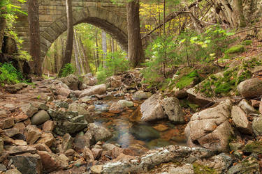 Acadia Carriage Bridge Stream by somadjinn