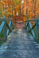 Bridge to Fall by somadjinn