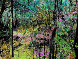 Landscape by DorothyPugh