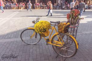 The yellow bike by BillyNikoll