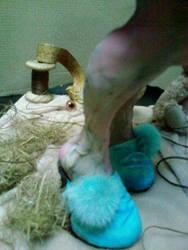 Mucuska the fairy teddy 18 by Bloodydoll1