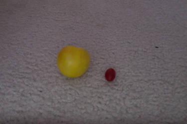 Tomatoes eh? by Jotunheimrpluski