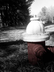 Fire Hydrant by MouthOfTheSouth
