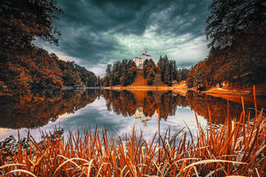 ...infrared trakoscan... by roblfc1892