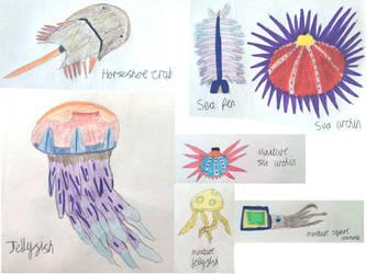 Non Vayamon life: Sea Invertabrates by Sia-the-Mawile