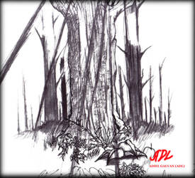 trees by 71ADL17