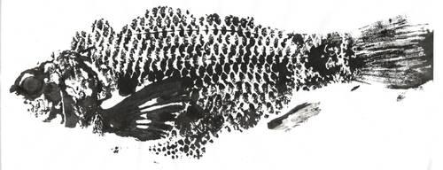 Gyotaku - peixe 1 by anjosarda