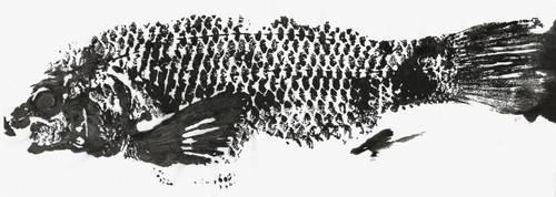 Gyotaku - peixe 2 by anjosarda