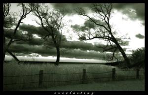 Everlasting by yurski