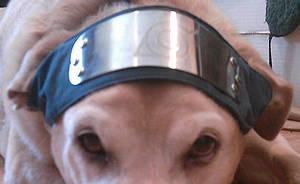 Ninja Hound ID by Kitsufox