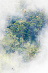 Costa Rica by chriskaula