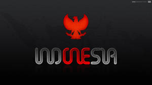 indONEsia by auua
