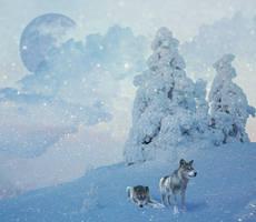 Winter Wonderland by Nayners23