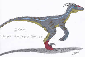 JP: Velociraptor Antirrhopus Sornaensis V.2 by Sinncrow
