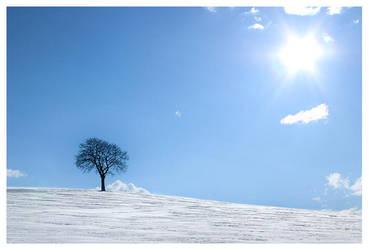 hello winter by Zendar