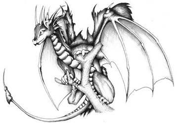 Pseudodragon by ceredwyn