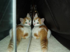 Mirror Friends by snipingqueen