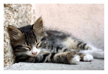 Sleepy Head by Elfenin