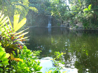 Tropical Waterfall by Duches77