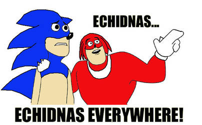 Echidnas... by LBDNytetrayn