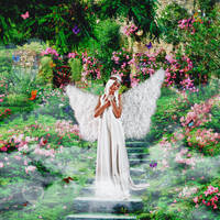 Angel's Garden by yunkaerphotographic