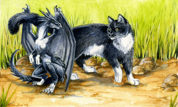 Two of  a Kind by Hbruton