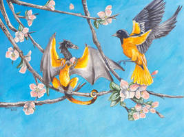 Orioles by Hbruton