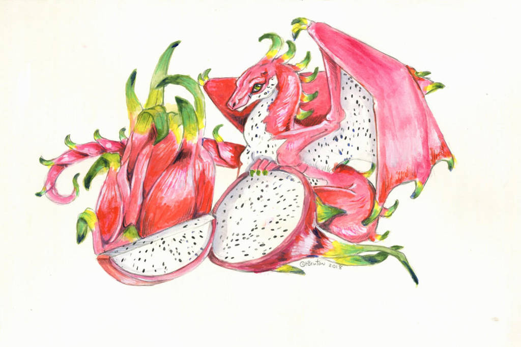 Dragonfruit Surprise by Hbruton