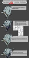 Shading tutorial by Delkkat