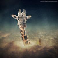 giraffe by evenliu