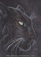 Black Panther aceo by vashley