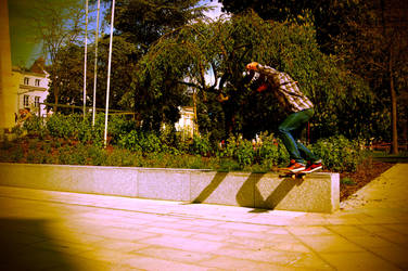 back tail by FeverForever