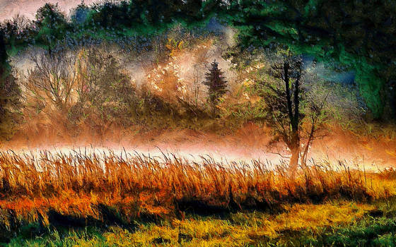 Morning Mist by montag451