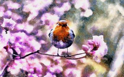 Little Bird by montag451
