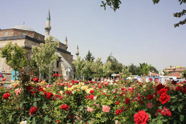 Konya Full of Flowers by MaeraFey