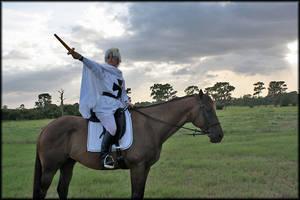 We Conquered... Vital Regions by Black-Hayate13