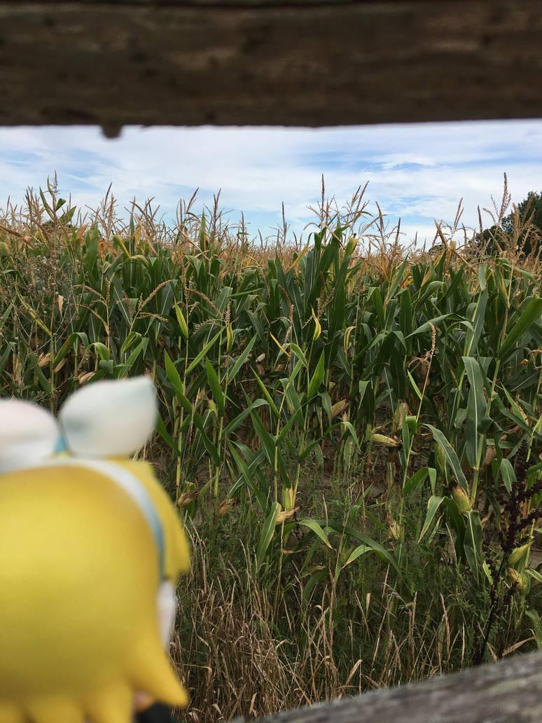 Corn! by FrillMaiden