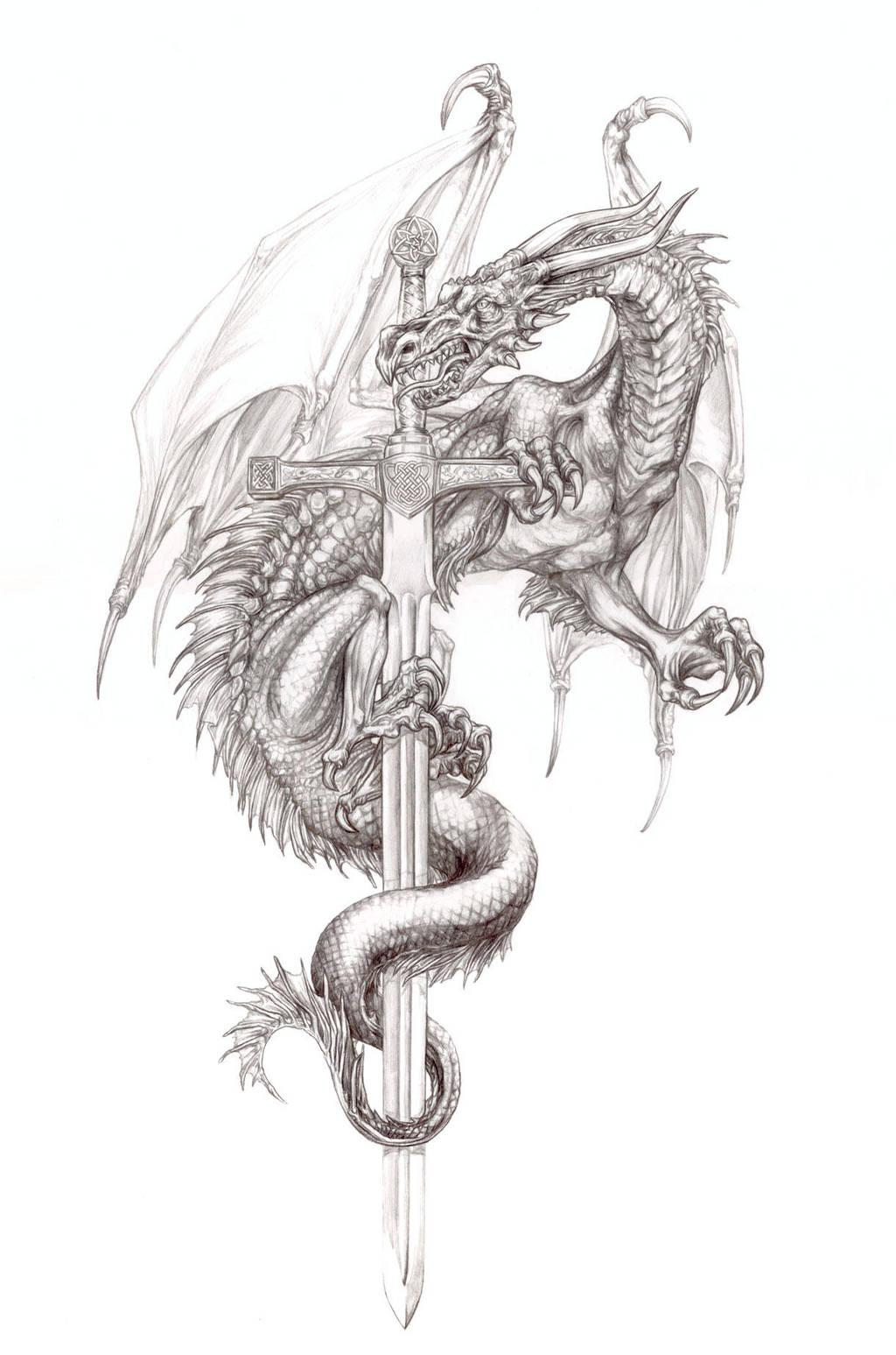 El-dragones by vinkalu
