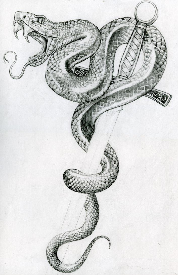 Snake by vinkalu