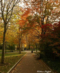 autumn dreams by yaseacabo