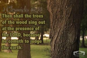 1 Chronicles 16:33 by WhiteVolt