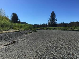 Kowee Creek, 3: 'round the bend by cmmdrsigma
