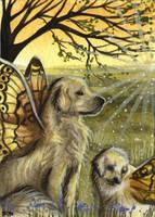 ACEO - Sun Dogs by DawnUnicorn