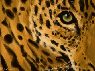 Jaguar by Marioni-Lammie