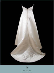 Dress IV by LilyStox
